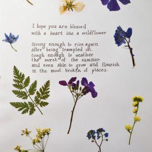 Wildflowers by Nila
